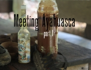 ayahuasca-9 copy